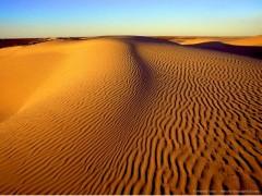 LAND_desert.jpg
