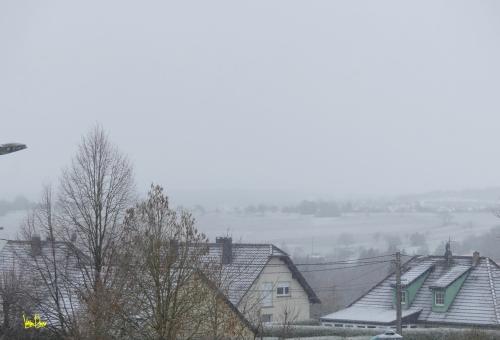 paysage d'hiver 2020.JPG