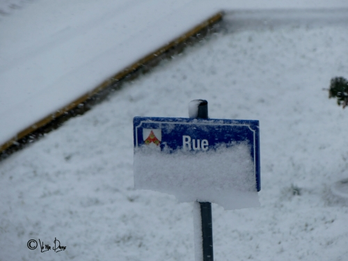 neige 2 12012020.JPG