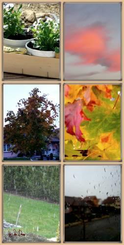 automne 2012.jpg